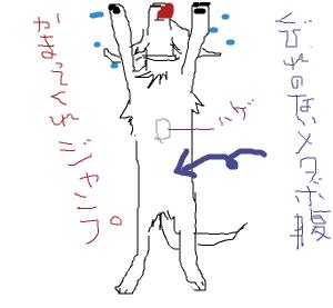 Cocolog_oekaki_2008_09_15_19_57